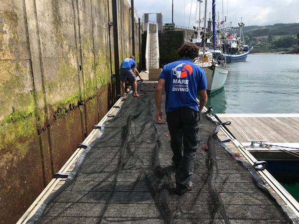 Preparación de redes de cultivo para instalación en el mar