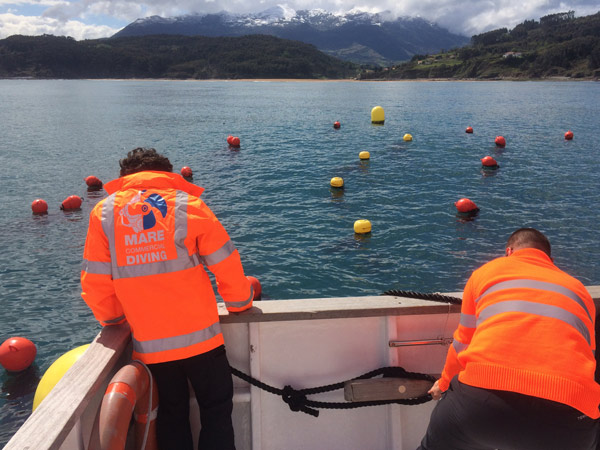 Relocation of seaweed field buoys