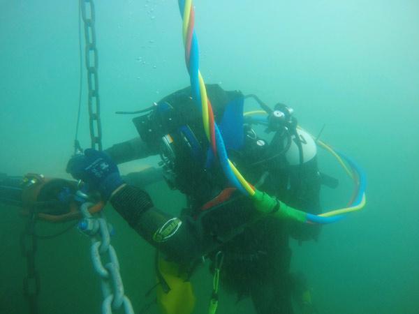 Maintenance of seaweed fields