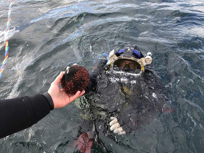 Recuperación de esfera de detección de fugas en extremo de mar de emisario