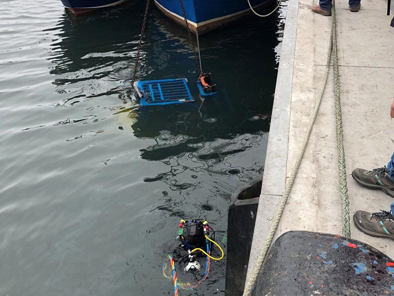 Recuperación de carretilla elevadora del fondo de puerto